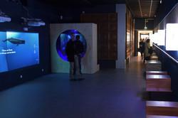 Nancy, réouverture du musée-aquarium