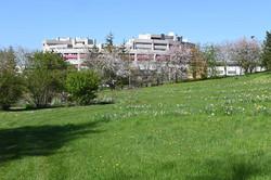 Nancy, faculté des Sciences et Technologies