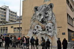 Nancy, street-art, Bordalo II