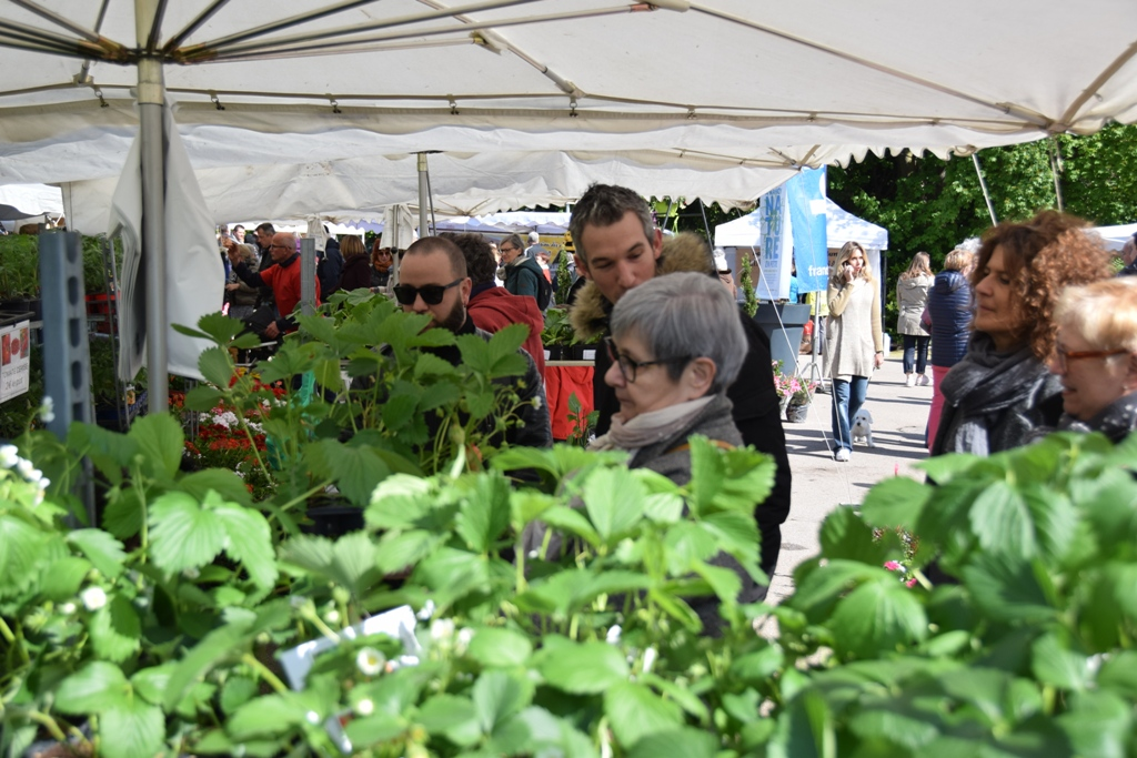Nancy, Nature en Fête 2019