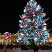 origines du sapin de Noël