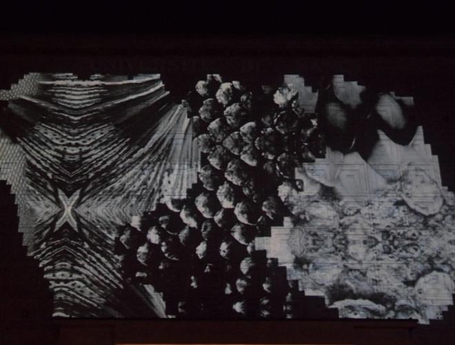 "DSC_07Nancy, animation ""Nocturne""70.JPG"