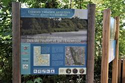 Tomblaine, îles du Foulon Encensoir