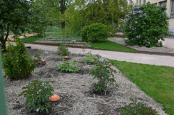Nancy, réhabilitation du jardin Godron