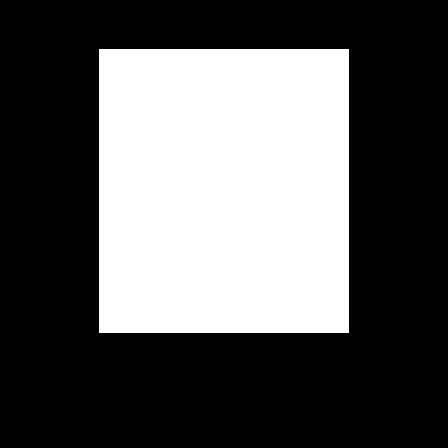 bibi2.png