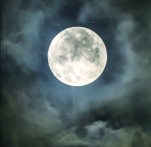 Silence Swami Veda_edited.jpg