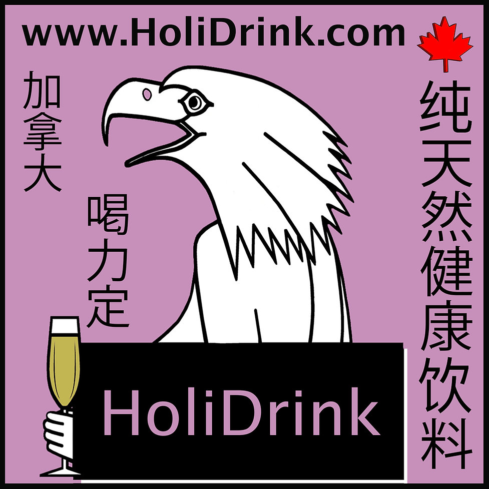 HoliDrink Logo Fascia 10 Oct 2020.jpg
