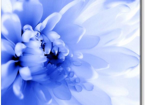 "BR Blue Floral Macro 30""x 30"""