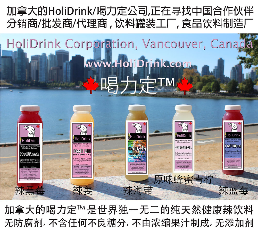 HoliDrink Corp Chinese Intro.jpg