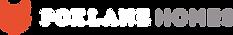 Foxlane_logo.png