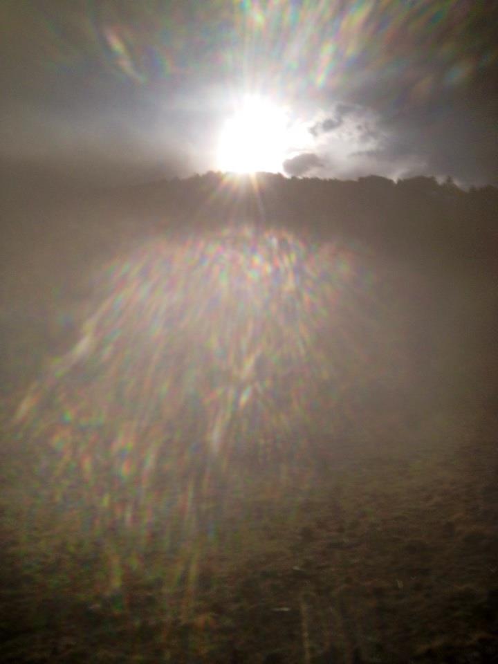 Aura - Seeing Beyond the Veil