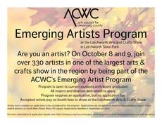 emerging artists program