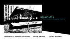 Public Art Display at Sage Art Center: Aquariums