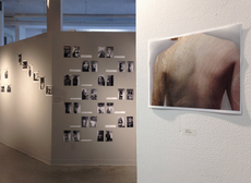 "opening today @ 12pm: ""multiples"" featuring the work of intro photo"