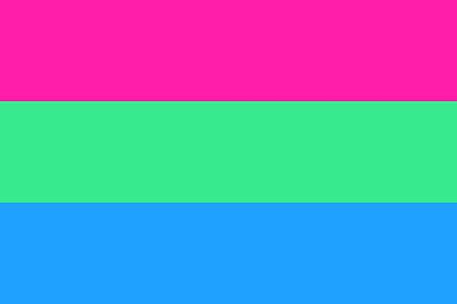 polysexual-flag-1128936573.jpg?crop=0.9x