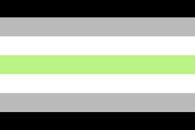 agender-flag-1592237680.jpg?crop=0.94474