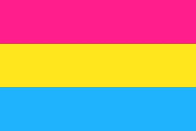 pansexualprideflag-1085565558.jpg?crop=0