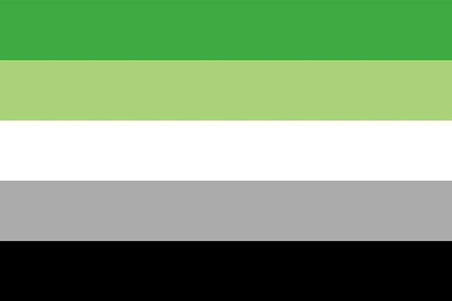 aromantic-flag-1592237769.jpg?crop=1xw:0