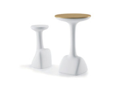 armillaria table / 2010