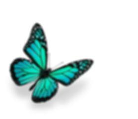 aqua butterfly 43759204.jpg
