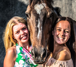 Owners and Horses Social Media-2568