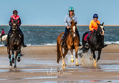 HOLKHAM riding on the beach June 2021-6270.jpg