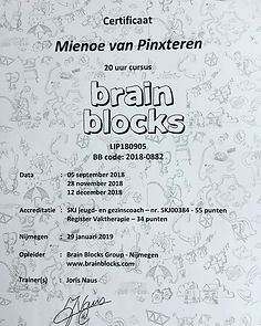 Brain Blocks diploma.jpg