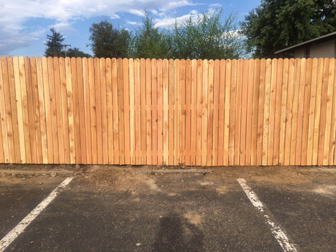 New Fence Build