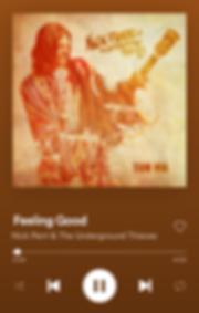 Feeling Good Spotify SWIPE.PNG