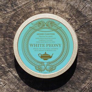 whitepeonyON.jpg