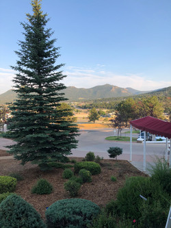 Stanley reception view