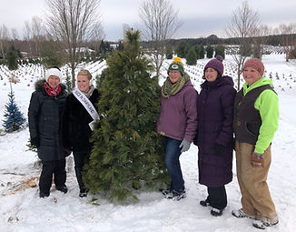 Alice in Dairyland poses with the first Christmas tree at the annual Christmas tree cutting