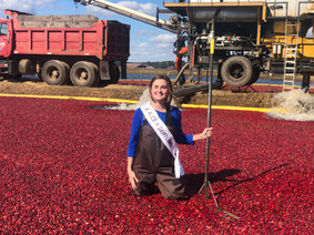 Wisconsin: Home of Half the World's Cranberries