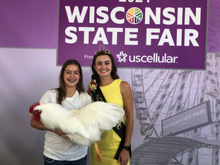 The Purpose of Wisconsin Fairs