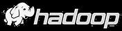 Hadoop_edited.png