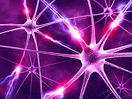 purpleneurons.jpg
