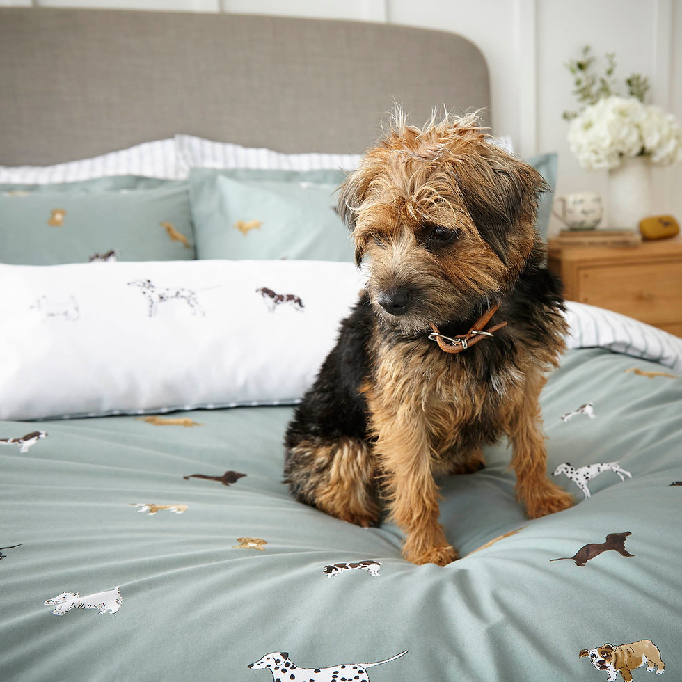 Sophie Allport Fetch Duvet Cover Set - Carvills Bedroom