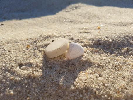 2020 Community Beach Clean-Up Week!