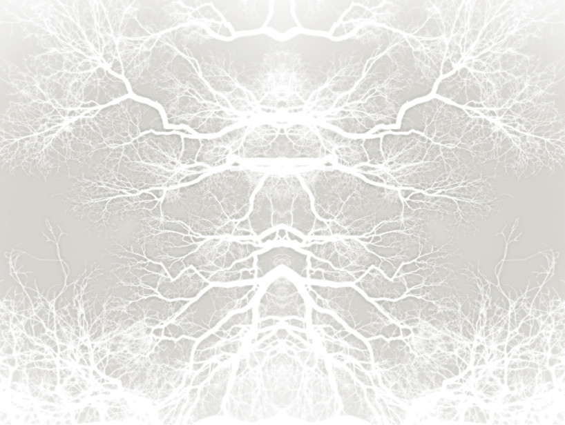 Ghost Trees II