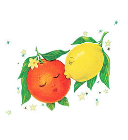 LemonOrange with Stars copy.jpg