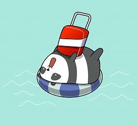 pandacamp.jpg