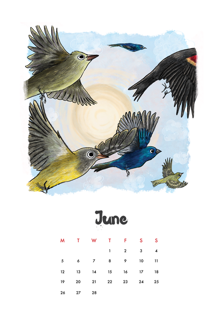 bird calendar in calendar forms.png