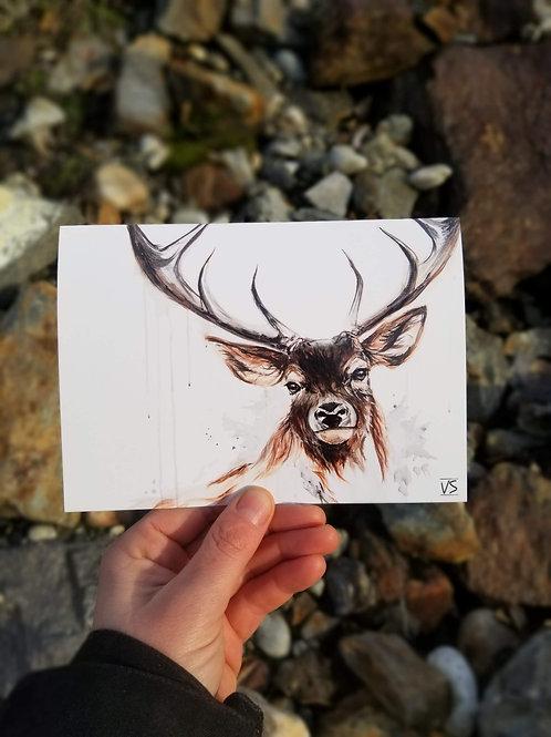oh my deer greeting card