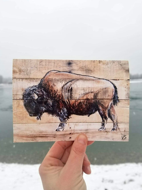 Prehistoric bison greeting card