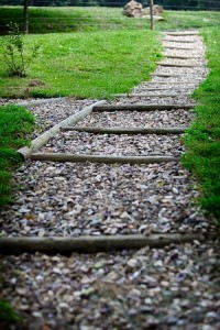 Every Path Offers Choices