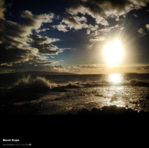 Sunrise Marsh Engle