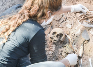 Osteoteca: una colección de huesos para resolver casos forenses