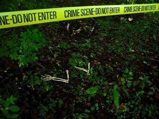 Botánica forense e investigación criminal