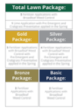 TLC_Packages-01.png