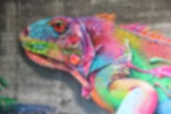 Grafiti Web Design